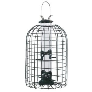 Audubon Squirrel Proof Caged Tube Type Bird Feeder