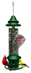 Brome Squirrel Buster Plus Wild Bird Feeder with Cardinal Ring