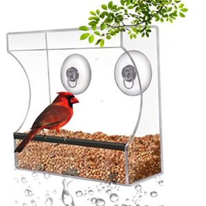 Planted Perfect Crystal Clear Bird Feeder