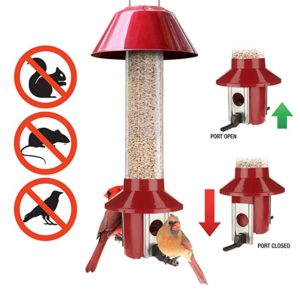 Roamwild PestOff Red Squirrel Proof Cardinal Bird Feeder