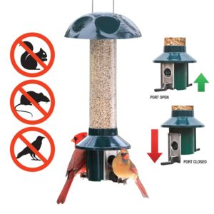 Roamwild PestOff Squirrel Proof Bird Feeder