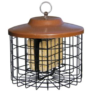 Squirrel-X Squirrel Proof Suet Bird Feeder