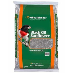 Valley Splendor Black Oil Sunflower Seeds
