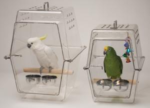 Wingabago Bird Carrier