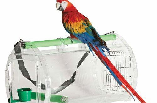 Macaw carrier