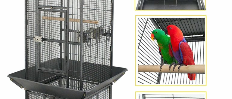 You and Me Standing Parrot Cage